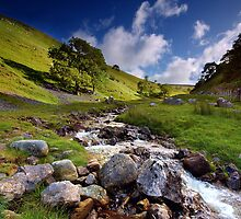 Along Dowber Gill Beck by Andrew Leighton