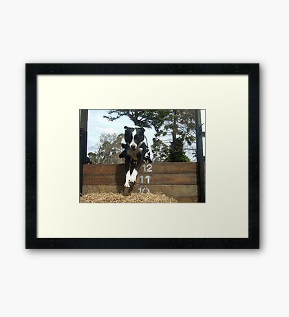 Zorro by Charlie Framed Print