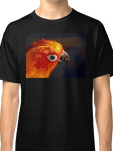 The Sound Of Colour - Sun Conure Classic T-Shirt