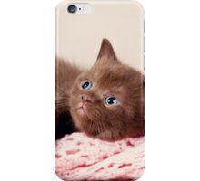 funny furry kitten iPhone Case/Skin
