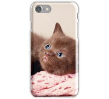 funny furry kitten iPhone Case/Skin