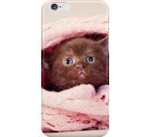 Funny fluffy kitten iPhone Case/Skin