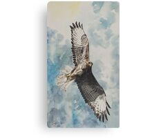 Sarah's Buzzard Canvas Print