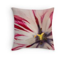 White and pink tulip - square crop Throw Pillow
