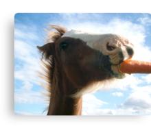 Carrot Kisses Canvas Print