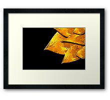 Flame Leaves on Black Framed Print