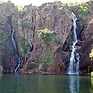 Wangi Falls, Litchfield NP, Northern Territory, Australia by Adrian Paul