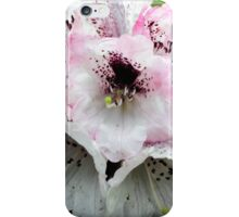 White and Pink Rhododendron iPhone Case/Skin