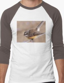 Any Bugs In Your Shed? - Fantail NZ Men's Baseball ¾ T-Shirt