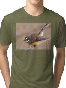 Any Bugs In Your Shed? - Fantail NZ Tri-blend T-Shirt