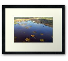 Marshy lake (The Baltic states) Framed Print
