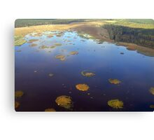 Marshy lake (The Baltic states) Canvas Print