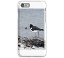 Oyster Catchers Shore Stroll iPhone Case/Skin