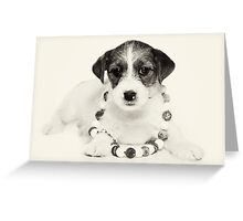 Puppy Jack Russell Terrier and beads Greeting Card