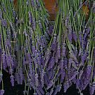 Lavender by paintbrush