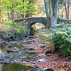 Stone Bridge in Autumn by Matt Ravick