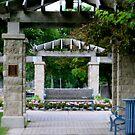 The Garden by kkphoto1