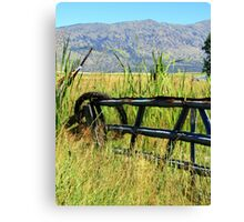 Wire and Fence Canvas Print