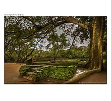 Ancient City of Sigiriya Photographic Print