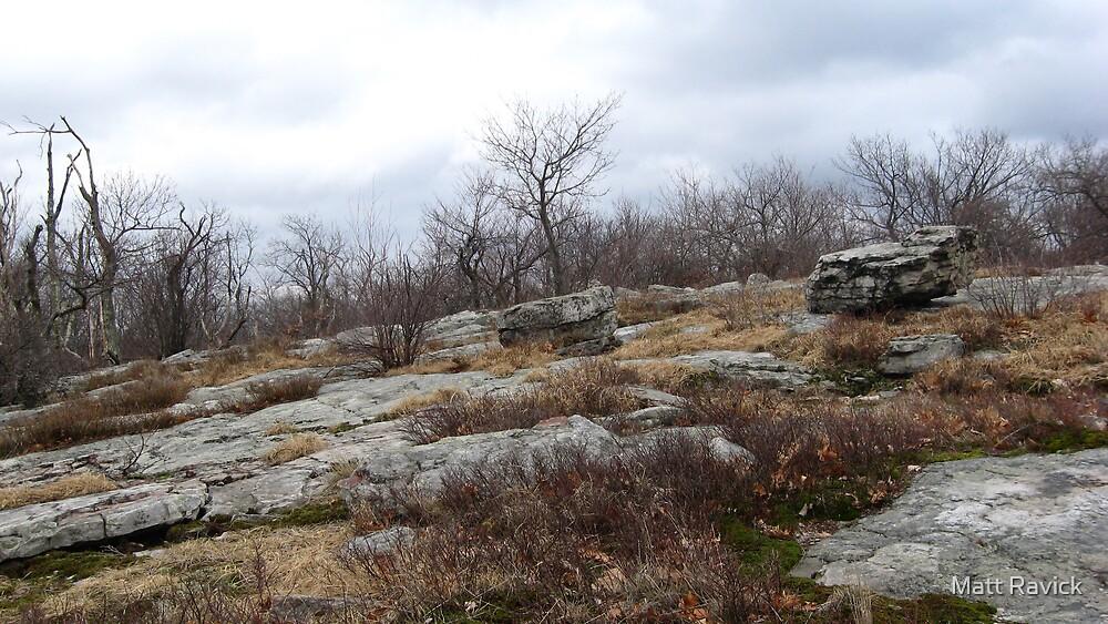 Desolate Mountain 3 by Matt Ravick