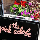 Pink Adobe by David DeWitt