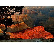 Grand Canyon At Dawn Photographic Print