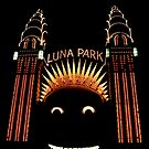 Looney Park - Luna Park at Night - Sydney - Australia by Bryan Freeman