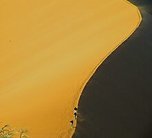 No 45 Sand Dune by Matt Eagles