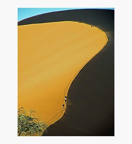 No 45 Sand Dune Photographic Print