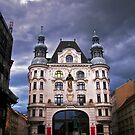 Vienna in a rainy day by Elena Skvortsova