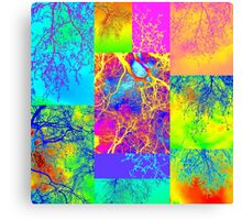 tree of life collage Canvas Print