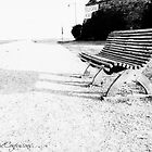 Lonely Bench II by Ashfaq