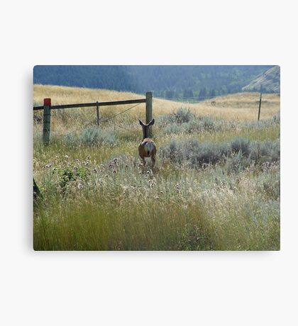 Approach and concentrate... Metal Print