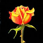 A Perfect Rose, One More Time by robertsloan2