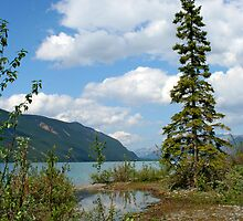 Muncho Lake, British Columbia by Vickie Emms