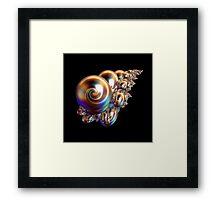 Golden Pearly Shells Framed Print