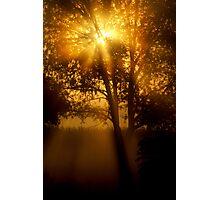 Taste Of Fall Photographic Print