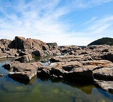 Tors Cove Tidepools by Stephen Rowsell