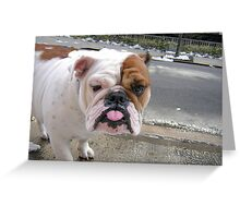 THIS IS WHAT I THINK OF YOU! Greeting Card