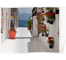 View To The Aegean Poster