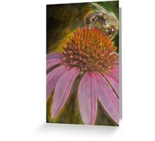 Bee the Coneflower  Greeting Card