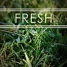 Fresh by Phillip Shannon