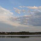 At the Lake by Diane Petker