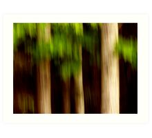 Impression - Northern Forest  Art Print