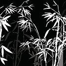 Bamboo by KelseyP77
