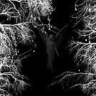 Forest Angel by KelseyP77