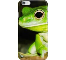 White lipped Tree Frog iPhone Case/Skin