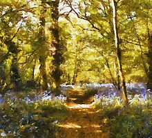 everdon woods by cynthiab