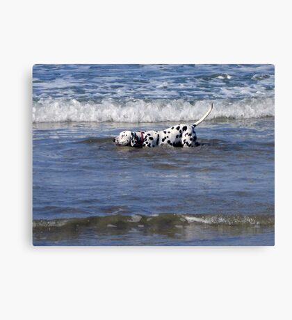 Must Keep my Tail Dry Canvas Print