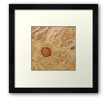 """""""The Wall #2"""" Framed Print"""